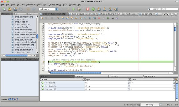 netbeans_screen_600